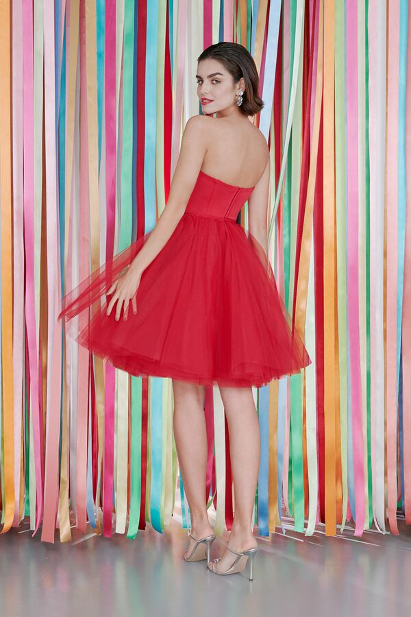 Satin Bustier and Tulle Skirt