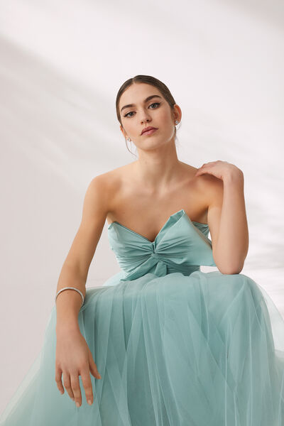 Long Tulle and Taffeta Dress - Party